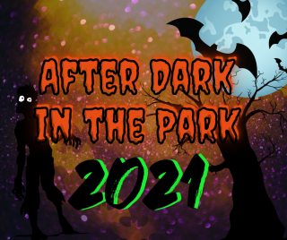 After Dark in the Park